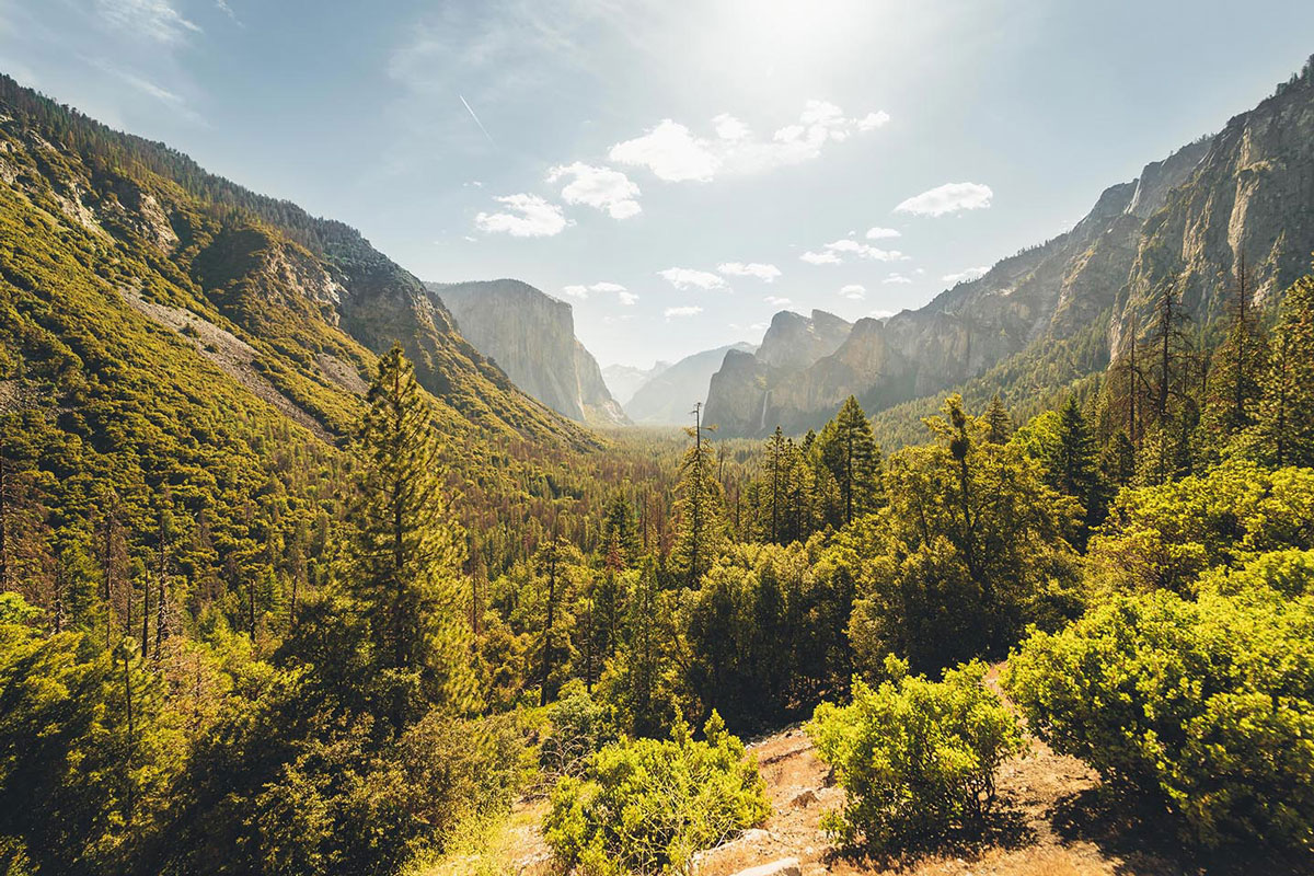 10 pięknych wycieczek przyrodniczych w Stanach Zjednoczonych